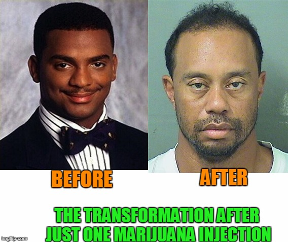 Stop shooting up the weed kids. | BEFORE THE TRANSFORMATION AFTER JUST ONE MARIJUANA INJECTION AFTER | image tagged in tiger woods | made w/ Imgflip meme maker