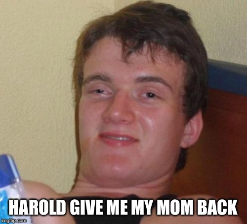 10 Guy Meme | HAROLD GIVE ME MY MOM BACK | image tagged in memes,10 guy | made w/ Imgflip meme maker