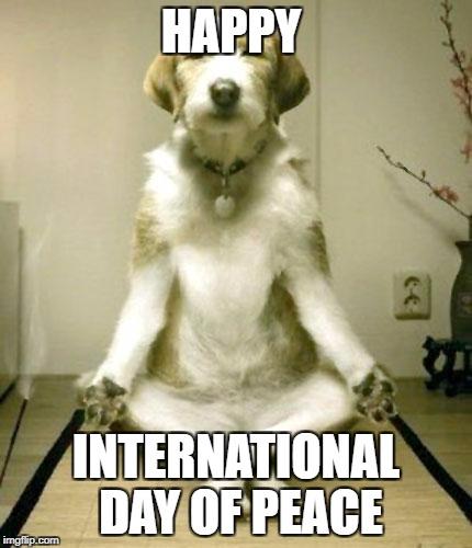 inner peace dog imgflip