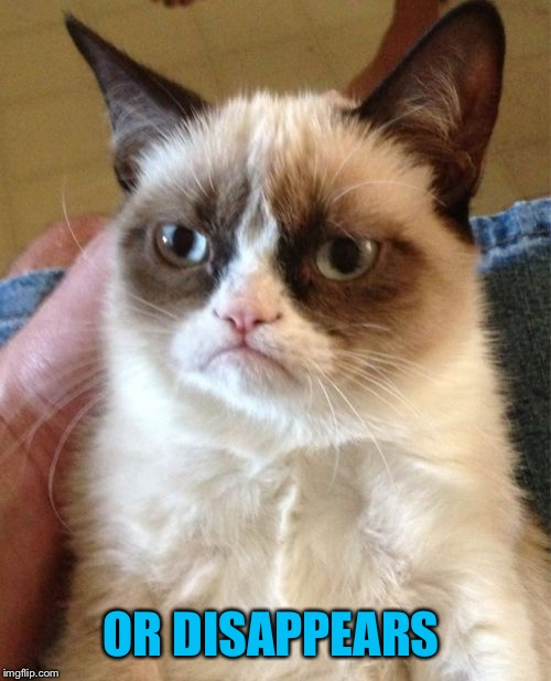 Grumpy Cat Meme | OR DISAPPEARS | image tagged in memes,grumpy cat | made w/ Imgflip meme maker