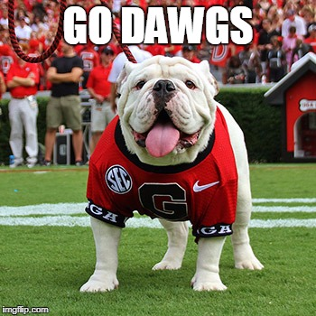 GO DAWGS | made w/ Imgflip meme maker