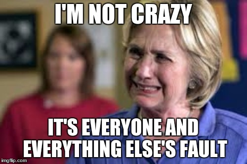 I'M NOT CRAZY IT'S EVERYONE AND EVERYTHING ELSE'S FAULT | made w/ Imgflip meme maker