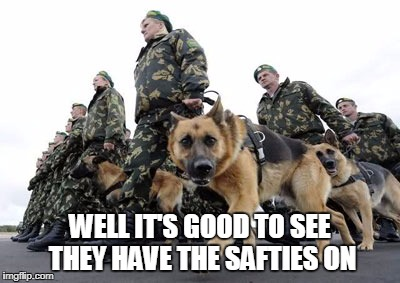 WELL IT'S GOOD TO SEE THEY HAVE THE SAFTIES ON | made w/ Imgflip meme maker