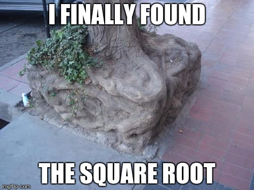Not very useful now, is it? | I FINALLY FOUND THE SQUARE ROOT | image tagged in funny | made w/ Imgflip meme maker