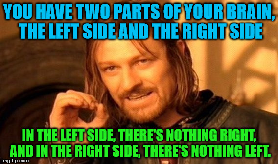 Left and right | YOU HAVE TWO PARTS OF YOUR BRAIN, THE LEFT SIDE AND THE RIGHT SIDE IN THE LEFT SIDE, THERE'S NOTHING RIGHT, AND IN THE RIGHT SIDE, THERE'S N | image tagged in memes,one does not simply,left,right,brain | made w/ Imgflip meme maker
