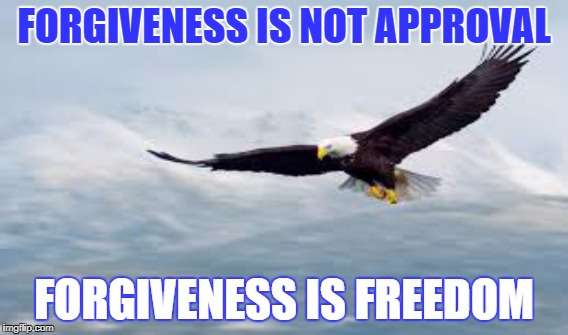Forgiveness is Not Approval | FORGIVENESS IS NOT APPROVAL FORGIVENESS IS FREEDOM | image tagged in forgiveness | made w/ Imgflip meme maker