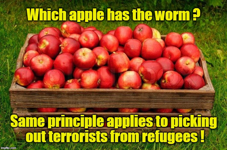 Which apple has the worm? | Which apple has the worm ? Same principle applies to picking out terrorists from refugees ! | image tagged in which has the worm,refugees,terrorists | made w/ Imgflip meme maker