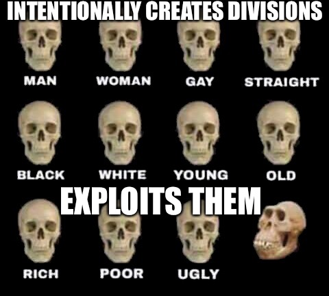 INTENTIONALLY CREATES DIVISIONS EXPLOITS THEM | image tagged in man woman gay straight skull | made w/ Imgflip meme maker