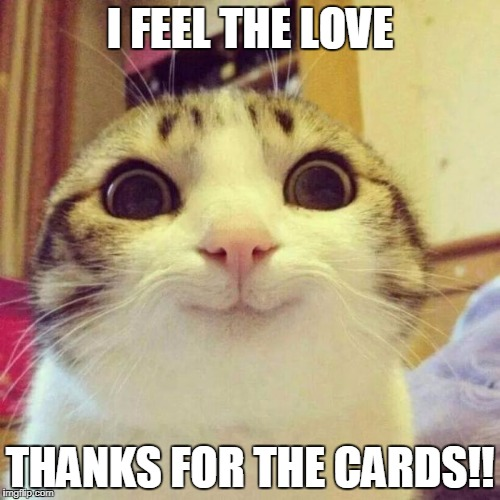Smiling Cat Meme | I FEEL THE LOVE THANKS FOR THE CARDS!! | image tagged in memes,smiling cat | made w/ Imgflip meme maker