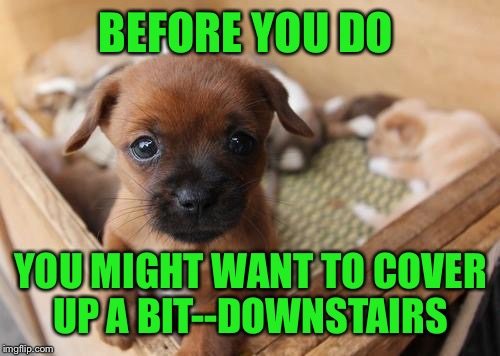 BEFORE YOU DO YOU MIGHT WANT TO COVER UP A BIT--DOWNSTAIRS | made w/ Imgflip meme maker