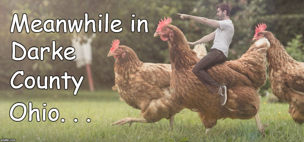Meanwhile in Ohio. . . Darke County | image tagged in chicken crusade | made w/ Imgflip meme maker