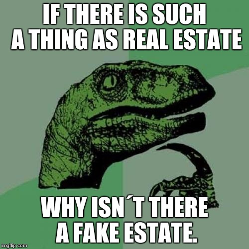 Philosoraptor Meme | IF THERE IS SUCH A THING AS REAL ESTATE WHY ISN´T THERE A FAKE ESTATE. | image tagged in memes,philosoraptor | made w/ Imgflip meme maker