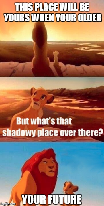 Simba Shadowy Place Meme | THIS PLACE WILL BE YOURS WHEN YOUR OLDER YOUR FUTURE | image tagged in memes,simba shadowy place | made w/ Imgflip meme maker