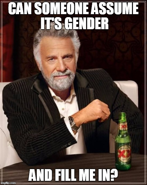 The Most Interesting Man In The World Meme | CAN SOMEONE ASSUME IT'S GENDER AND FILL ME IN? | image tagged in memes,the most interesting man in the world | made w/ Imgflip meme maker