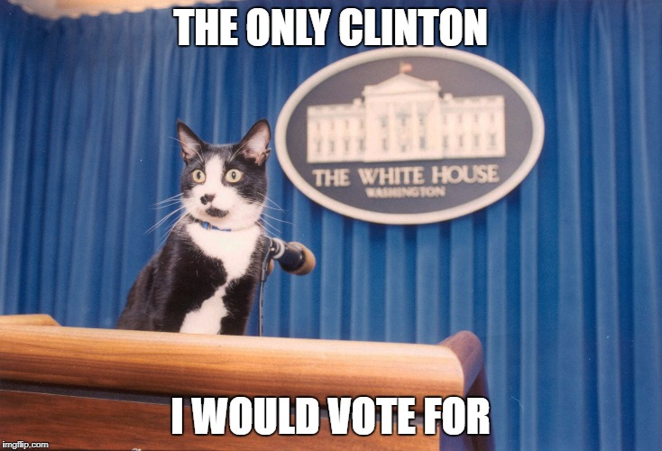 It's True :) | THE ONLY CLINTON I WOULD VOTE FOR | image tagged in socks 1993,hillary clinton | made w/ Imgflip meme maker