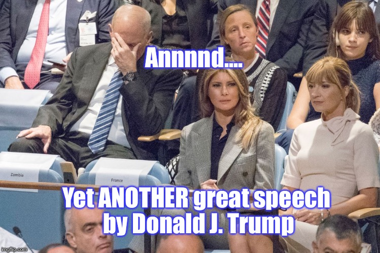 When Your OWN WHITEHOUSE CHIEF OF STAFF Facepalms You...You Need To Hang It Up: | Yet ANOTHER great speech by Donald J. Trump Annnnd.... | image tagged in memes,donald trump,united nations,speech | made w/ Imgflip meme maker