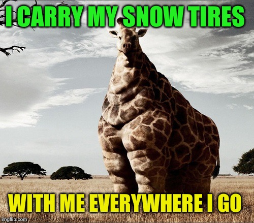 I CARRY MY SNOW TIRES WITH ME EVERYWHERE I GO | made w/ Imgflip meme maker