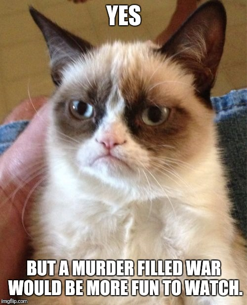 Grumpy Cat Meme | YES BUT A MURDER FILLED WAR WOULD BE MORE FUN TO WATCH. | image tagged in memes,grumpy cat | made w/ Imgflip meme maker