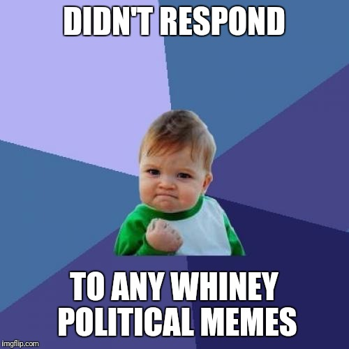 Success Kid Meme | DIDN'T RESPOND TO ANY WHINEY POLITICAL MEMES | image tagged in memes,success kid | made w/ Imgflip meme maker