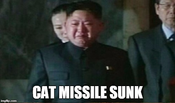 CAT MISSILE SUNK | made w/ Imgflip meme maker
