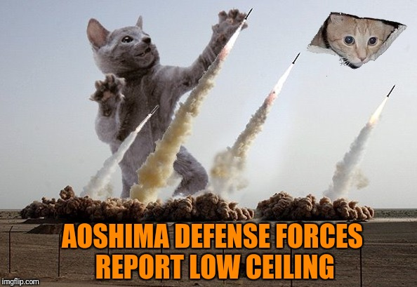 AOSHIMA DEFENSE FORCES REPORT LOW CEILING | made w/ Imgflip meme maker