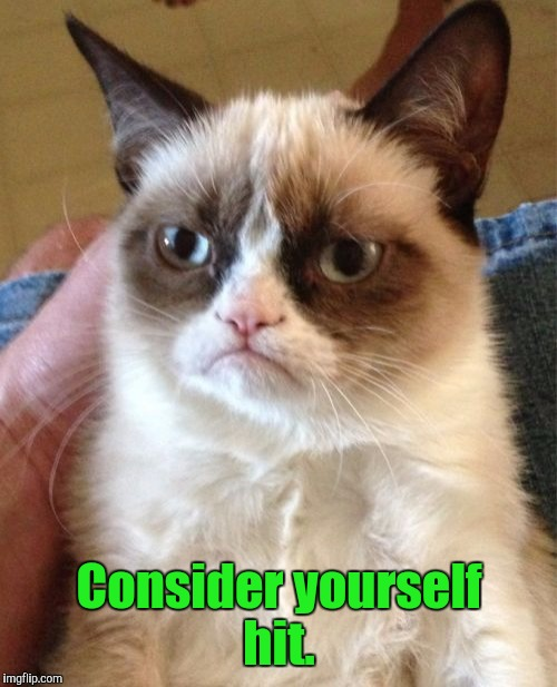 Grumpy Cat Meme | Consider yourself hit. | image tagged in memes,grumpy cat | made w/ Imgflip meme maker