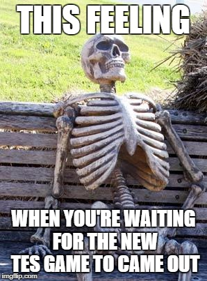 Waiting Skeleton Meme | THIS FEELING WHEN YOU'RE WAITING FOR THE NEW TES GAME TO CAME OUT | image tagged in memes,waiting skeleton,bethesda,skyrim | made w/ Imgflip meme maker