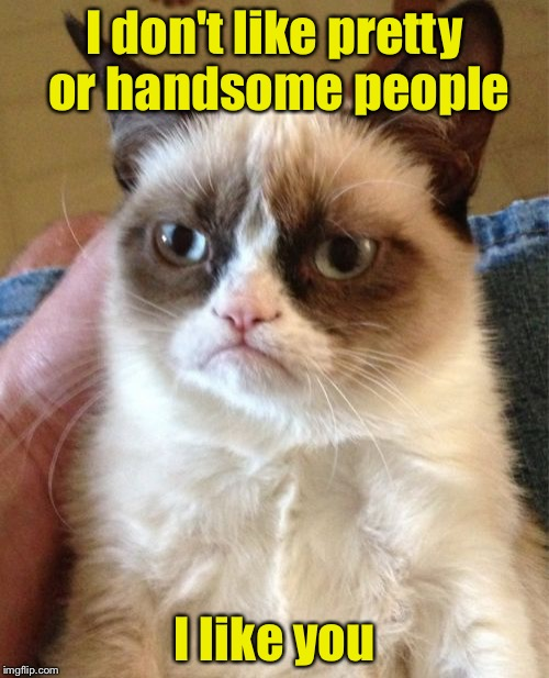 Grumpy Cat's attempt to be nice | I don't like pretty or handsome people I like you | image tagged in memes,grumpy cat,ugly | made w/ Imgflip meme maker