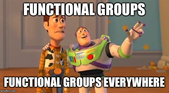 TOYSTORY EVERYWHERE | FUNCTIONAL GROUPS FUNCTIONAL GROUPS EVERYWHERE | image tagged in toystory everywhere | made w/ Imgflip meme maker
