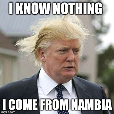 Donald Trump | I KNOW NOTHING I COME FROM NAMBIA | image tagged in donald trump | made w/ Imgflip meme maker