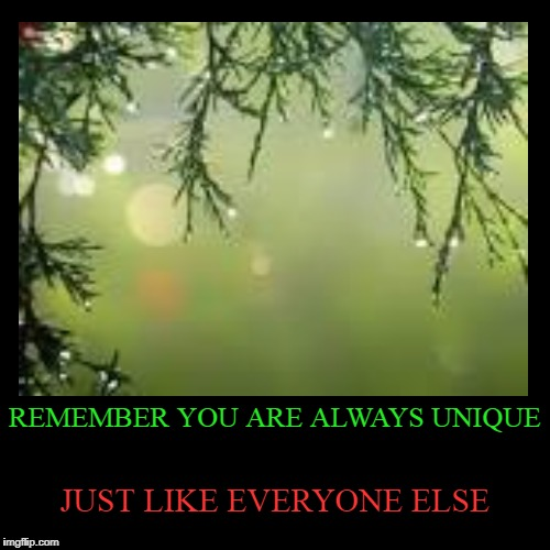 REMEMBER YOU ARE ALWAYS UNIQUE | JUST LIKE EVERYONE ELSE | image tagged in funny,demotivationals | made w/ Imgflip demotivational maker