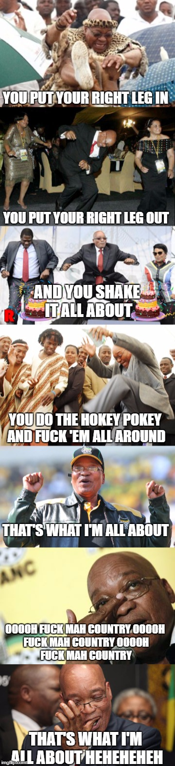 YOU PUT YOUR RIGHT LEG IN YOU PUT YOUR RIGHT LEG OUT AND YOU SHAKE IT ALL ABOUT YOU DO THE HOKEY POKEY AND F**K 'EM ALL AROUND THAT'S WHAT I | image tagged in south africa,wtf | made w/ Imgflip meme maker