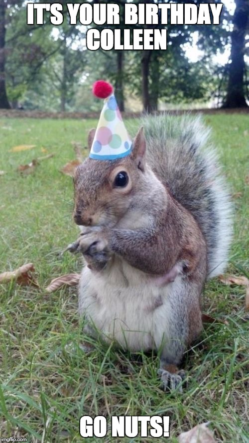 Super Birthday Squirrel | IT'S YOUR BIRTHDAY COLLEEN GO NUTS! | image tagged in memes,super birthday squirrel | made w/ Imgflip meme maker