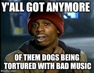 Y'all Got Any More Of That Meme | Y'ALL GOT ANYMORE OF THEM DOGS BEING TORTURED WITH BAD MUSIC | image tagged in memes,yall got any more of | made w/ Imgflip meme maker