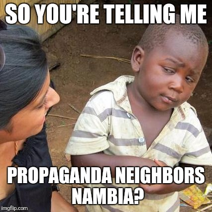 Third World Skeptical Kid Meme | SO YOU'RE TELLING ME PROPAGANDA NEIGHBORS NAMBIA? | image tagged in memes,third world skeptical kid | made w/ Imgflip meme maker