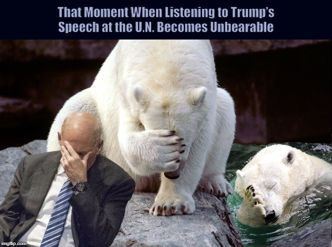 That Moment When Listening to  Trump's Speech at the U.N. Becomes Unbearable  | image tagged in donald trump,john kelly,united nations,speech,funny,bears | made w/ Imgflip meme maker