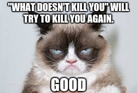 """WHAT DOESN'T KILL YOU"" WILL TRY TO KILL YOU AGAIN. GOOD 
