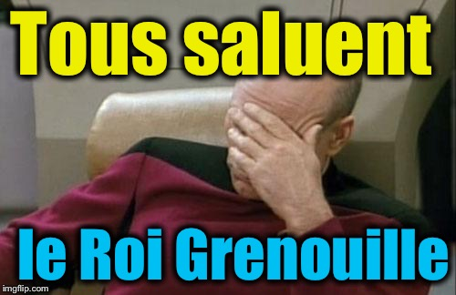 Captain Picard Facepalm Meme | Tous saluent le Roi Grenouille | image tagged in memes,captain picard facepalm | made w/ Imgflip meme maker