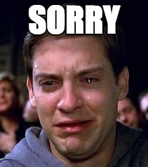 SORRY | image tagged in sorry | made w/ Imgflip meme maker