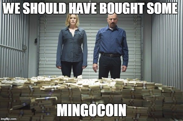 Breaking bad money | WE SHOULD HAVE BOUGHT SOME MINGOCOIN | image tagged in breaking bad money | made w/ Imgflip meme maker