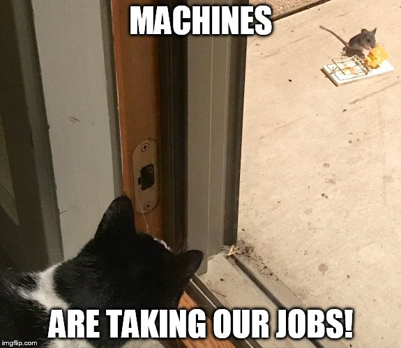 Cat and mouse game | MACHINES ARE TAKING OUR JOBS! | image tagged in cat,mouse,trap | made w/ Imgflip meme maker