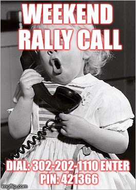 telephone girl | WEEKEND RALLY CALL DIAL: 302-202-1110 ENTER PIN: 421366 | image tagged in telephone girl | made w/ Imgflip meme maker