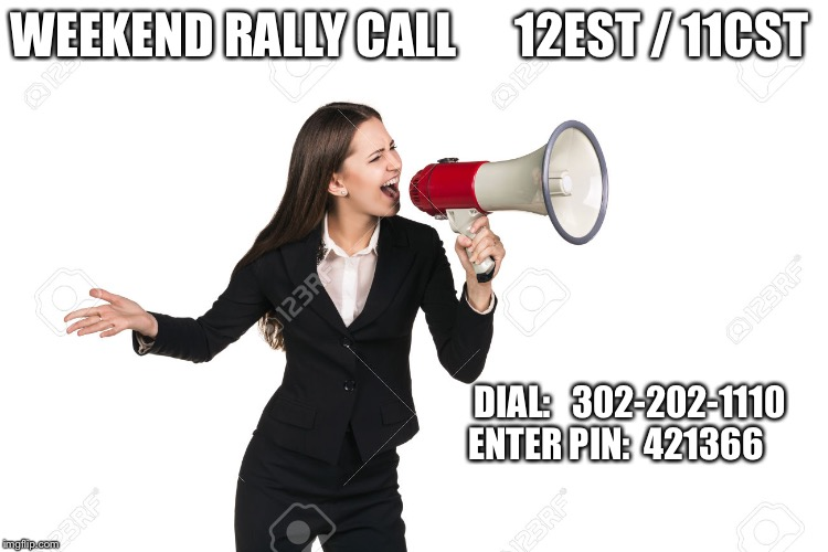 WEEKEND RALLY CALL      12EST / 11CST DIAL:   302-202-1110    ENTER PIN:  421366 | image tagged in megaphone | made w/ Imgflip meme maker