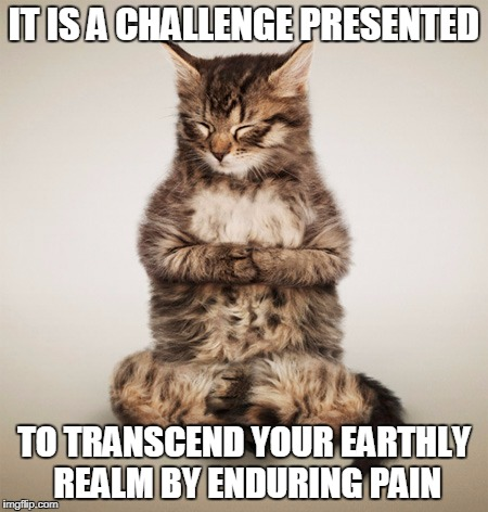 IT IS A CHALLENGE PRESENTED TO TRANSCEND YOUR EARTHLY REALM BY ENDURING PAIN | made w/ Imgflip meme maker