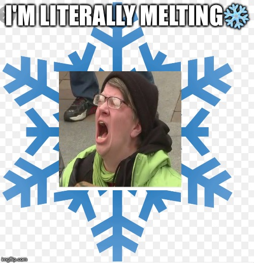Literallllly |  I'M LITERALLY MELTING❄️ | image tagged in snowflakes,words that offend liberals,liberals,politics | made w/ Imgflip meme maker