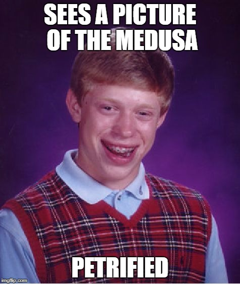 Bad Luck Brian Meme | SEES A PICTURE OF THE MEDUSA PETRIFIED | image tagged in memes,bad luck brian | made w/ Imgflip meme maker