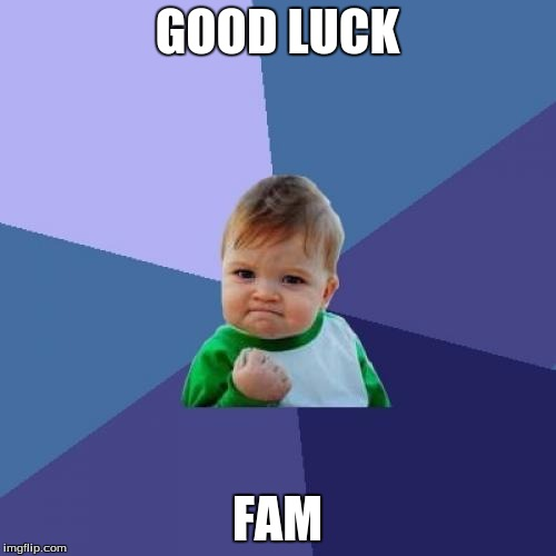 Success Kid Meme | GOOD LUCK FAM | image tagged in memes,success kid | made w/ Imgflip meme maker