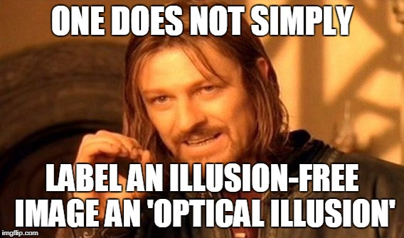 One Does Not Simply Meme | ONE DOES NOT SIMPLY LABEL AN ILLUSION-FREE IMAGE AN 'OPTICAL ILLUSION' | image tagged in memes,one does not simply | made w/ Imgflip meme maker