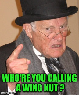Back In My Day Meme | WHO'RE YOU CALLING A WING NUT ? | image tagged in memes,back in my day | made w/ Imgflip meme maker