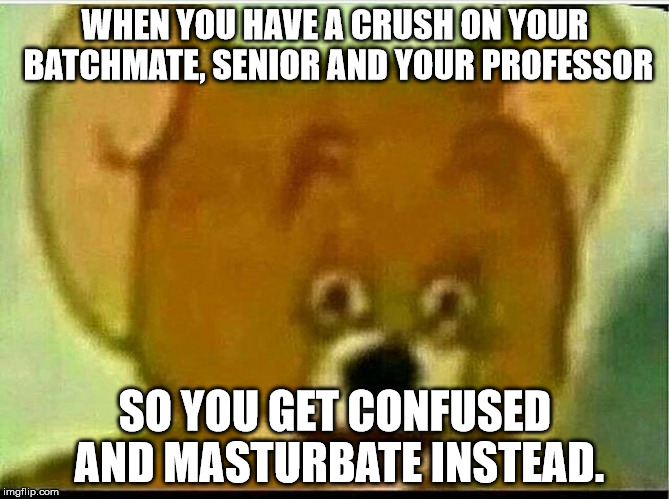 Jerry  | WHEN YOU HAVE A CRUSH ON YOUR BATCHMATE, SENIOR AND YOUR PROFESSOR SO YOU GET CONFUSED AND MASTURBATE INSTEAD. | image tagged in jerry | made w/ Imgflip meme maker